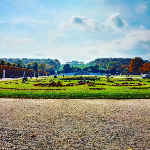 Schönbrunn Park Awesomeness Nature Photography Harmony Of Colours Sunny Day