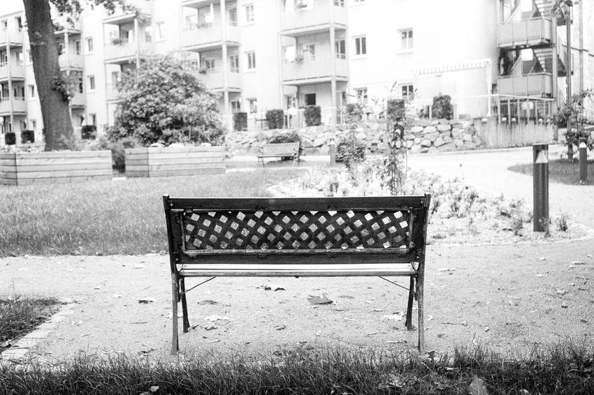 Location: Mühlweg Olympus Trip 35 | APX 100 (new) | D-76 1+1 15min 30sec EyeEm Best Shots - Black + White Black & White Monochrome Filmphotography Olympus Ilfordfilm Kodak D-76 AgfaPhoto APX 100 (new)