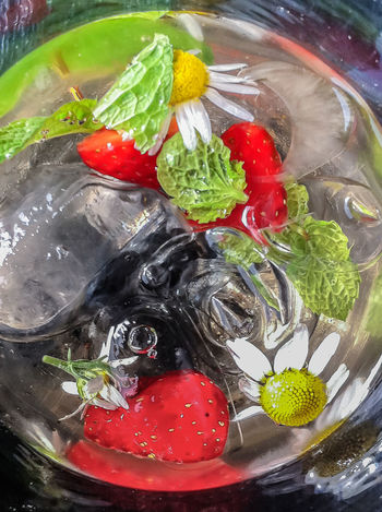 Infusion with colorful fresh fruits in Water with ice cubes and sparkling Water viewed from up and side Blueberry Close-up Colourful Flower Fresh Fresh Fruits Icecube Juicy Lemon Menthe Mint No People Sparkling Water Strawberry