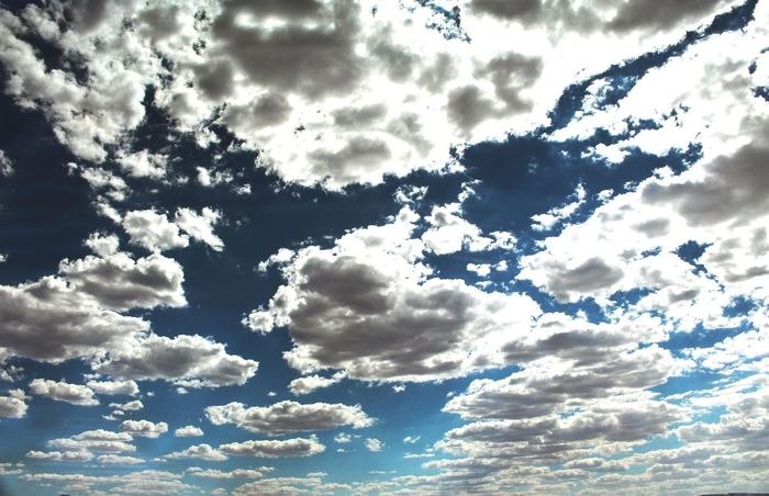 Cloud - Sky Nature Blue Cloudscape Fluffy Dramatic Sky Day Sunlight Low Angle View Beauty In Nature Sky