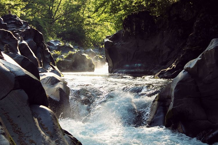 Floating Yin & Yang Floating River Beauty In Nature Waterfall Motion Rock - Object Nature Water No People Beauty In Nature Day Scenics Outdoors