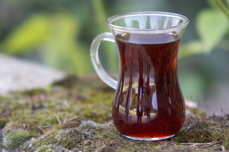 Food And Drink Drink Refreshment Glass Tea Close-up No People Tea - Hot Drink Drinking Glass Focus On Foreground Cup Hot Drink Plant Nature Day Grass Household Equipment Freshness Mug Transparent Outdoors Tea Cup Non-alcoholic Beverage Pitcher - Jug çay