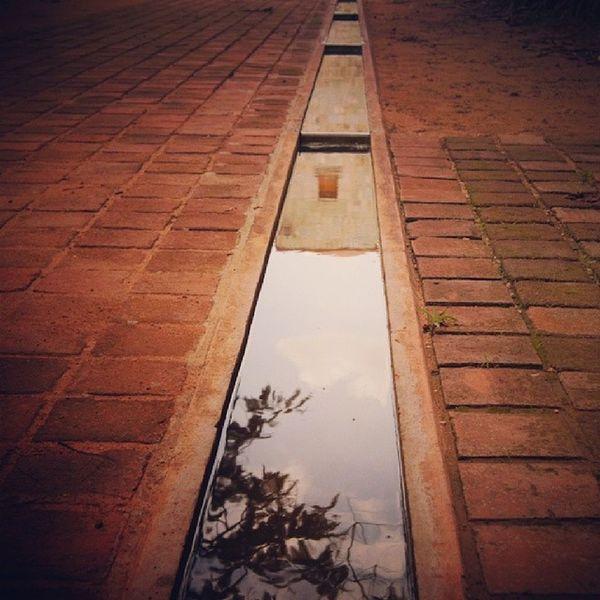 Espejo de Agua Oaxaca CDO 2013