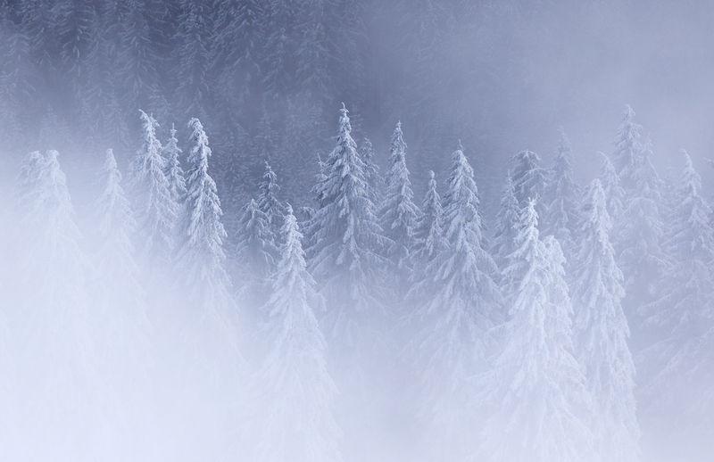 Full frame shot of snow against sky, rodnei mountains, romania
