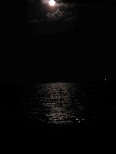 Moon Moonlight On The Sea Groynes