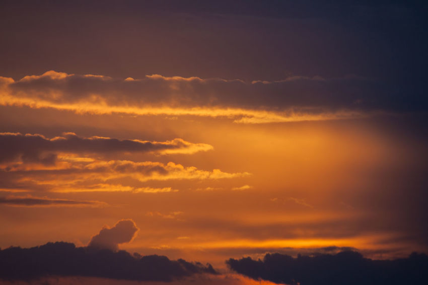 Beauty In Nature Cloud - Sky Day Dramatic Sky Nature No People Orange Color Outdoors Scenics Silhouette Sky Sun Sunset Tranquil Scene Tranquility Tree