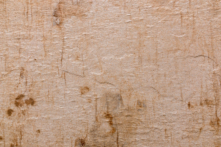 Surface level of wooden wall