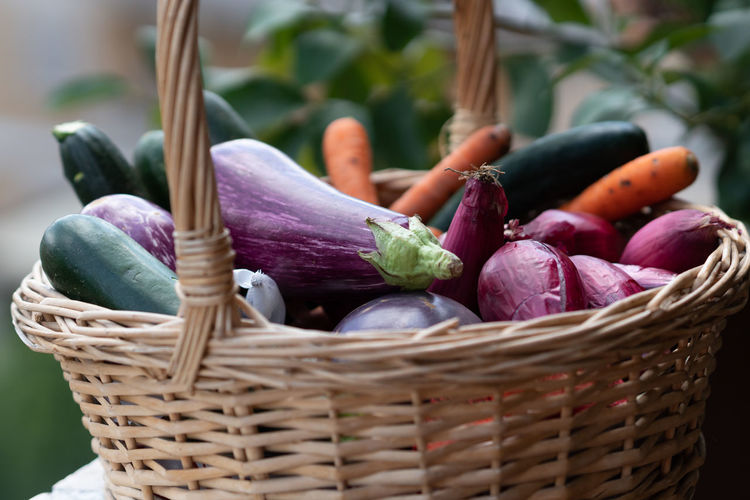 Wicker basket full of vegetables, eggplants, carrots, zucchini, and shallots. selective focus