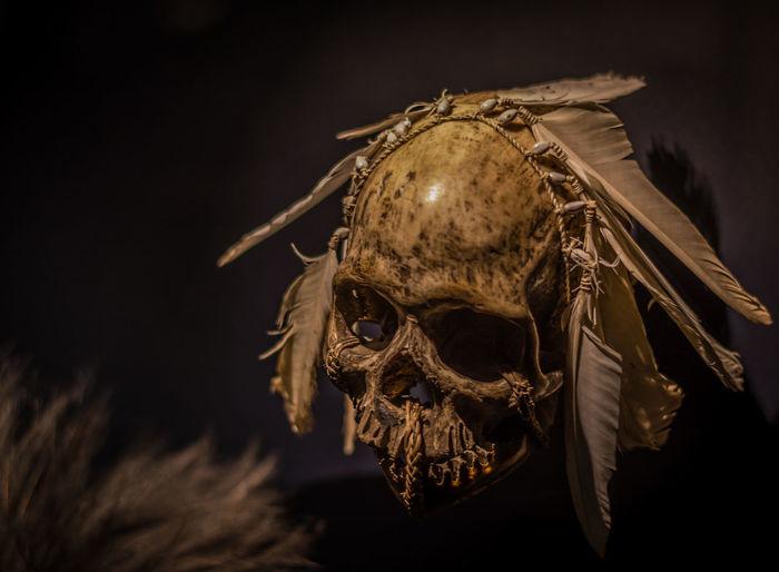 Black Background Close-up Deadhead Horror Human Humanskull Night No People Outdoors Skull Sky Spooky Statue