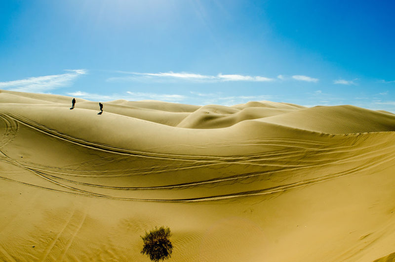 Arid Climate Day Desert Landscape Nature Outdoors People Sand Sand Dune Sky Sunlight