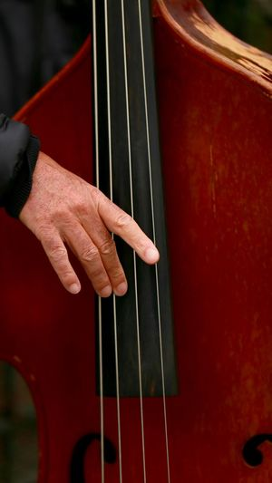 Cropped Hand Playing Double Bass