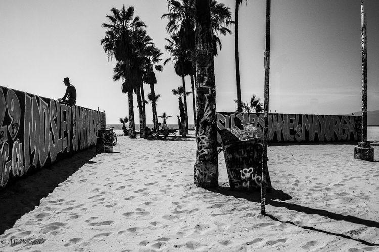 Venice Beach Beach Blackandwhite Day Graffiti Graffiti Art Leisure Activity Lifestyles Outdoors Palm Trees Sand Silhouette Sky Venice Beach