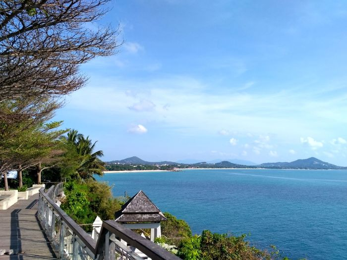 View Point, Ko Samui, Thailand Sea Water Cloud - Sky Tree Blue Idyllic Tranquility Sky Nature Scenics Vacations Beauty In Nature Travel Destinations Tranquil Scene Landscape Horizon Over Water Beach No People Day Panoramic Roadtrip Sea View Sea Life Archipelago Beauty In Nature