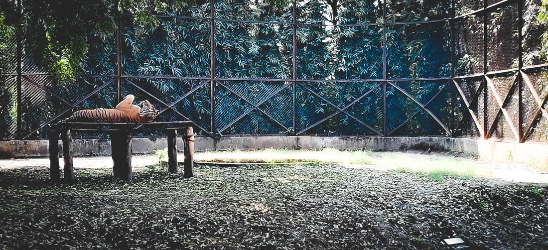 View of fence in park