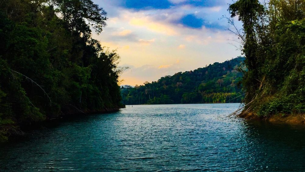 Nature Tree Beauty In Nature Water Scenics Sky Tranquility Tranquil Scene Outdoors Lake Sunset No People Forest Landscape Cloud - Sky Mountain Day Boathouse The Great Outdoors - 2017 EyeEm Awards