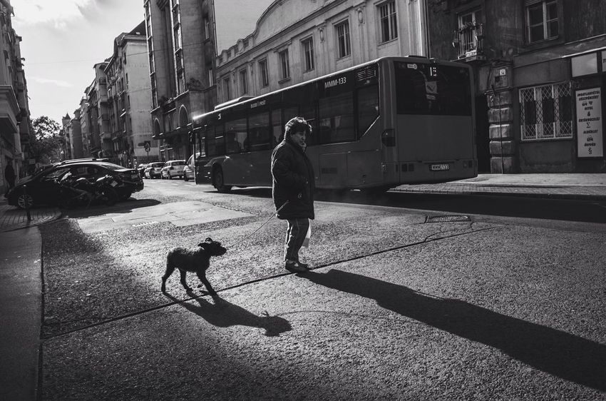 Streets Streetphotography Streetphoto_bw Budapest Blackandwhite City Life Shadows & Lights Bw_lover Bw Creative Light And Shadow Real People