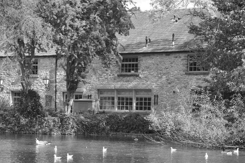 Architecture Built Structure No People Water Tree Outdoors Black & White All My Own Work Bakewell Blackandwhite No Edit/no Filter