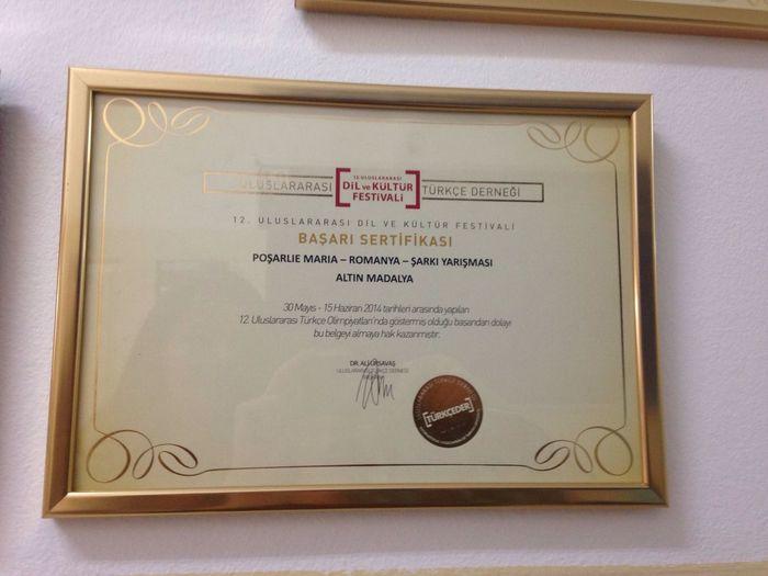 Altin Madalya Proud Of My Work Türkce Olimpiyatlari 11.Türkce Olimpiyatlari Sarki Finali