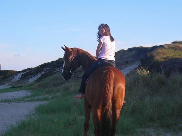 Sylt Riding Horse Fun Travel Holiday Nature Photography Dune Naturelovers Nature_collection