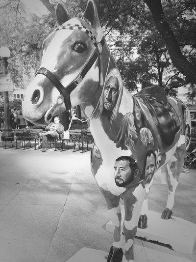 Horse Hung