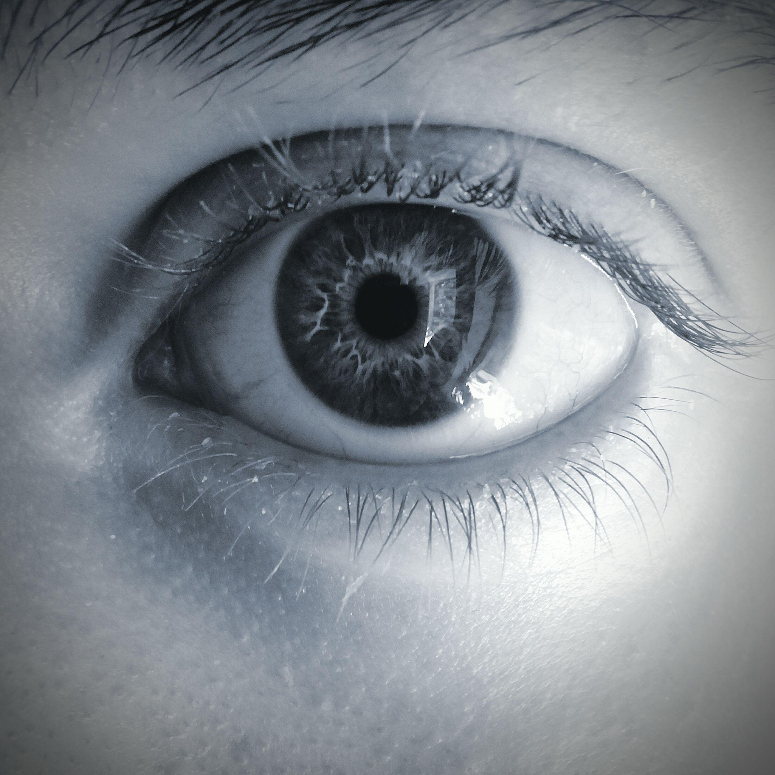 indoors, human eye, eyesight, close-up, eyelash, looking at camera, sensory perception, portrait, extreme close-up, part of, iris - eye, studio shot, eyeball, human skin, full frame, reflection, human face