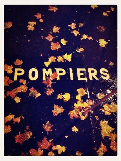 Pompiers d'automne. Automne Autumn Leaves Night