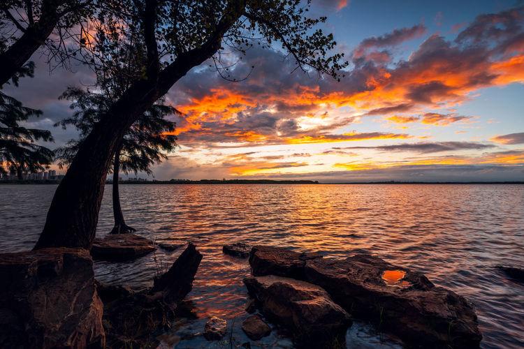 sunset Twilight Clouds Dusk Glow Horizon Idyllic Lake Landscape Nature Orange Color Scenics - Nature Sky Sunset Sunsets Tranquility Tree Water