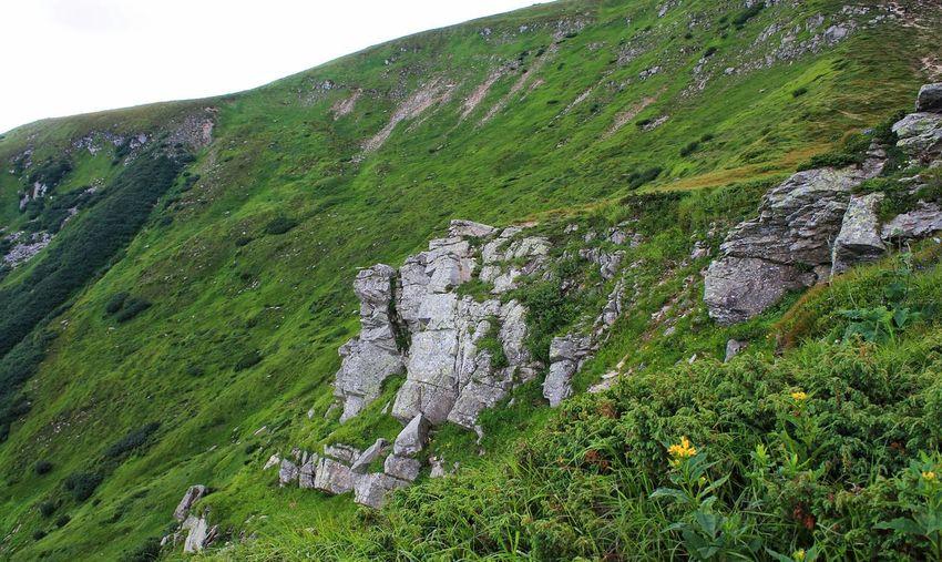Landscape Hoverla Mounthoverla Mountains Ukraine Carpathians Vorokhta Nature Україна Говерла Ворохта