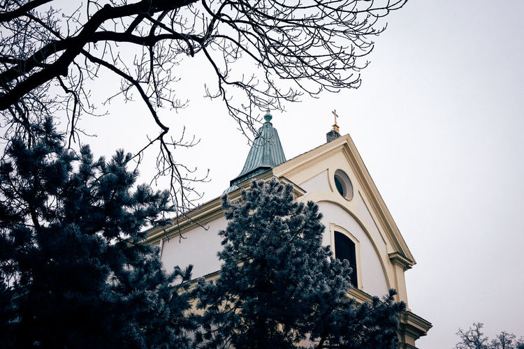 Architecture Church Behind Tree Historic History Local Church Outdoors Religion Vienna
