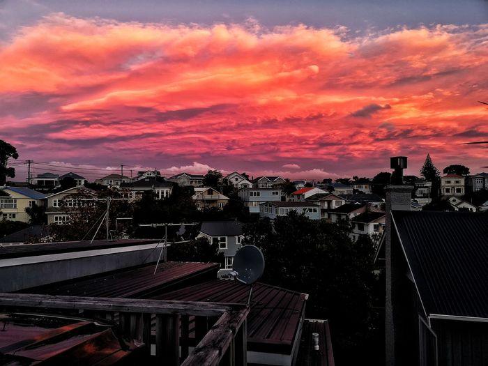 autumn sunset in new zealand City Sunset Amusement Park Sky