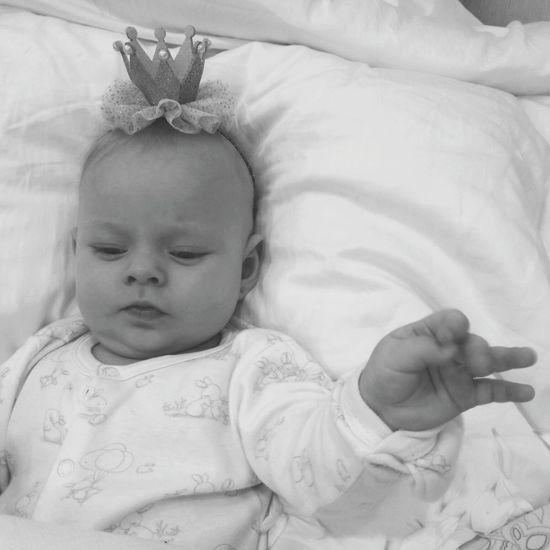 Maru the queen Childhood Human Hand Portrait Bedroom Bed Flower Relaxation Baby Babyhood