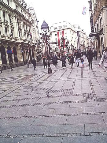 Photo by me. Walking Knez Mihajlova Belgrade Serbia People Enjoying Love Spring 2015  Hello World