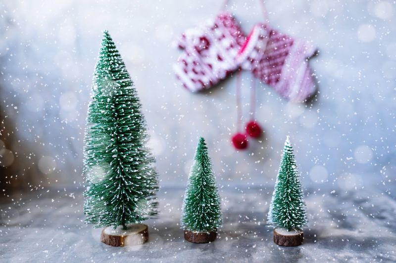 Christmas trees and knitted mittens Mittens Knitted Mittens Christmas Christmas Tree Christmas Decoration Christmas Ornament Celebration Winter Green Color Snow Tree Snowflake Christmas Lights Snowing Nature Indoors