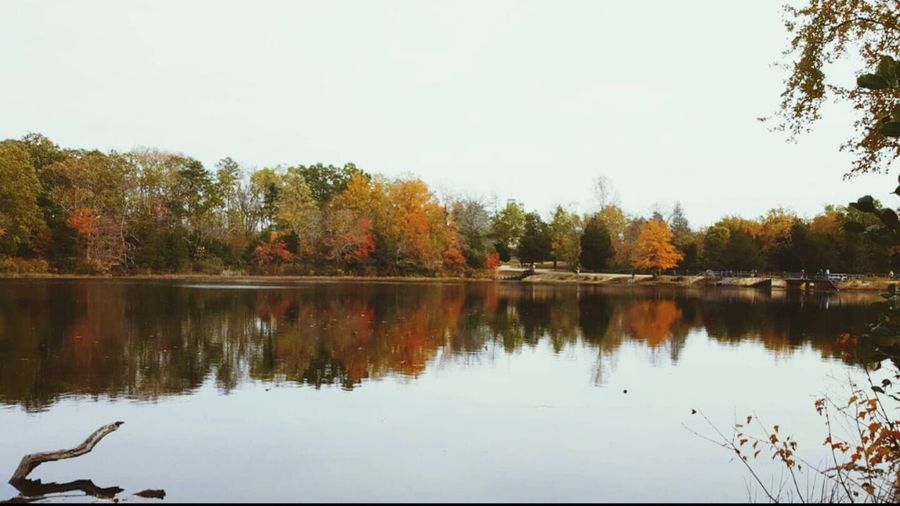 Tree Reflection Water Nature Tranquility Sky No People Outdoors Lake Clear Sky Beauty In Nature EyeEm Best Pictures Popular Photos EyeEm New Jersey EyeEmBestPics Eyem Best Shots Beautiful Reflection
