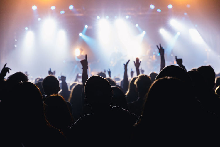 People enjoying in concert