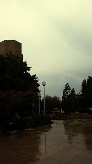 J.U.S.T Jordan University Of Scince And Technology
