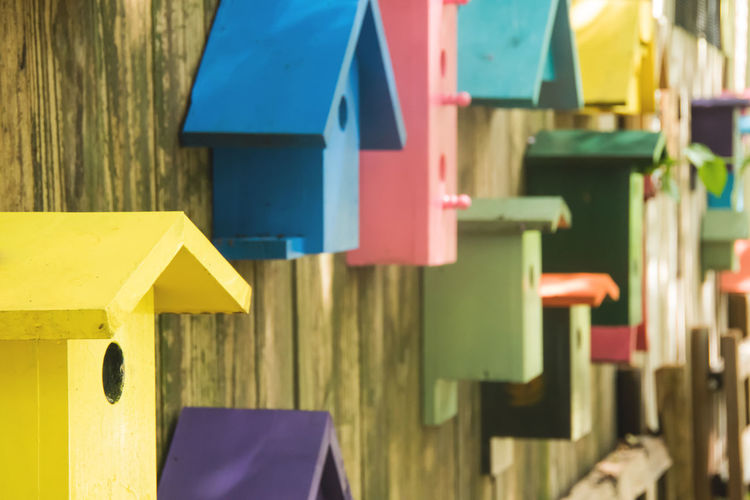 Colorful birdhouses on wooden wall