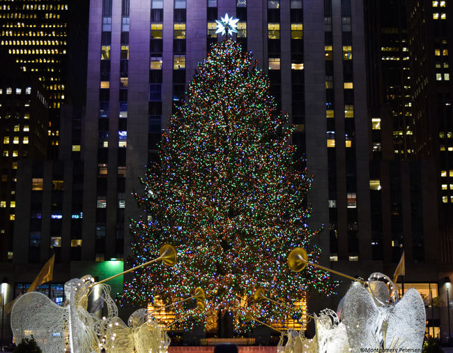 Christmas Christmas Tree New York Rockefeller Center December Christmas Decoration Christmas Lights EyeEm Best Shots EyeEmBestPics City Life EyeEm Best Edits EyeEm Gallery Travel Destinations 2016 EyeEm Awards Manhattan Cultures Photography 2016