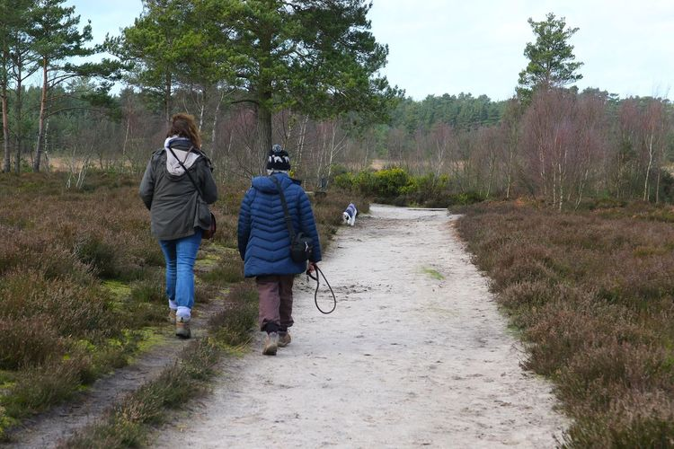 Surrey Thursley Common Casual Clothing Countryside Day Dog Leisure Activity Lifestyles Nature Outdoors Outdoors Photograpghy  Pathway People Real People Rear View Road Sky The Way Forward Togetherness Transportation Tree Two People Walking Women