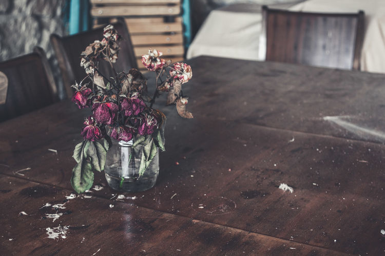 Wilted flower in vase on table