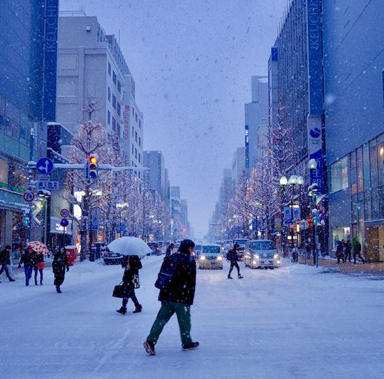 It snows in my hometown. Snowing Winter Outdoors Cityscape Urban Exploration Sapporoscapes The City Light Illuminated Snow ❄ Snowfall White Illumination Sapporo White Illumination The Street Photographer - 2017 EyeEm Awards The Street Photographer