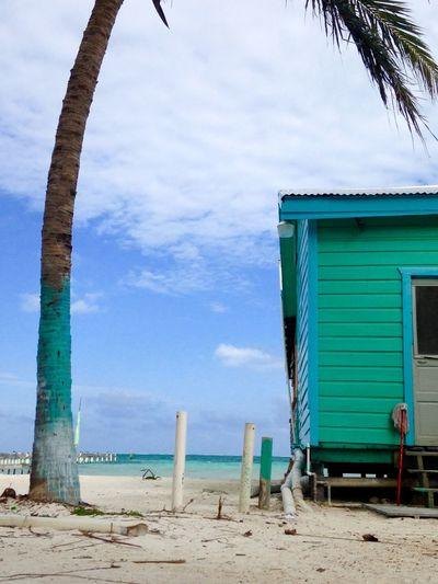 Sea Sandy Beach La Isla Bonita
