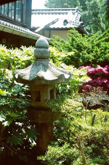 Japanese Houses In Korea Japanese Garden Hello World Hi! Filmcamera 35mm Film 35mm Camera Film Photography Lucky Super 200 NIKON FE2