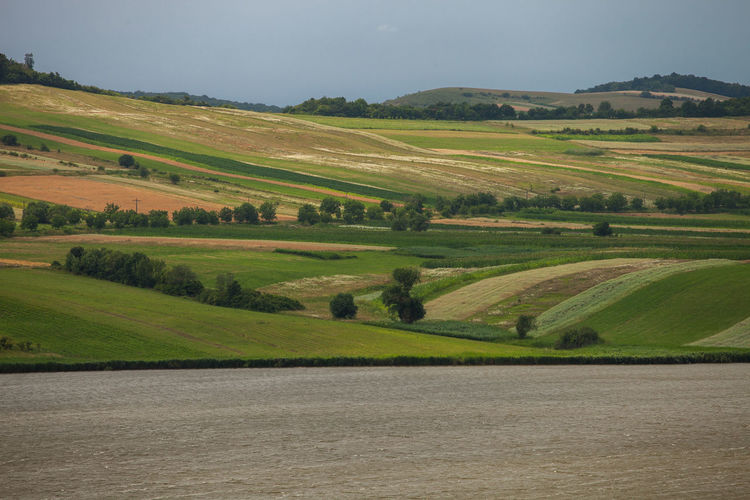 Rural fields and meadows from romania.