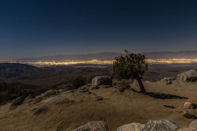 Scenic view of landscape at joshua tree national park during night