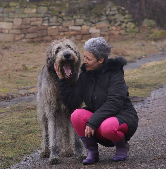 Irish Wolfhound Gentle Giant Animals Dogs Of EyeEm Dogslife My Love Willi The Wolfhound Nature Day Vineyards  Grass Say Cheese! Nature Outdoors Foggy Day