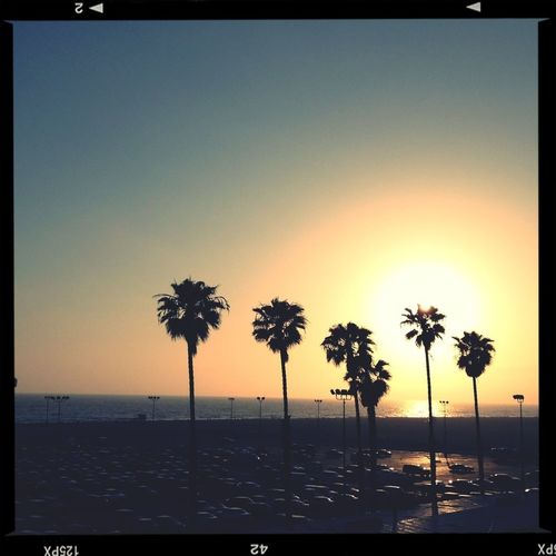 Sunny Afternoon Beach Los Angeles, California Traveling