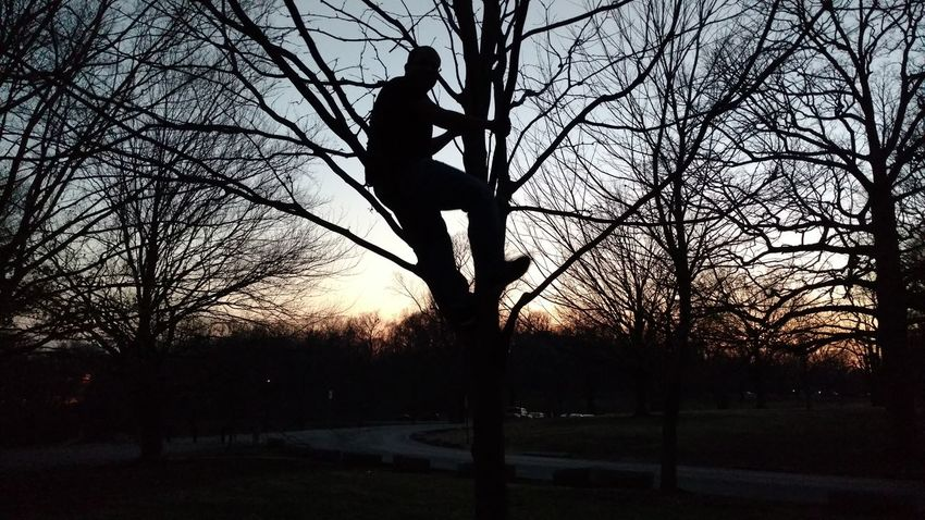 After Dark Photoshoot Learn & Shoot: After Dark Light And Shadow Hiding In The Dark Man On The Tree On A Tree Climbing Trees Evening Sky Sky Before Dark Telling Stories Differently