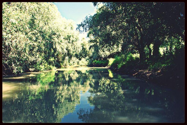 Donaudelta Nature Landscape Romania