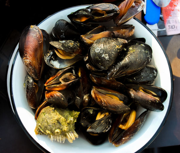 High angle view of mussels in plate